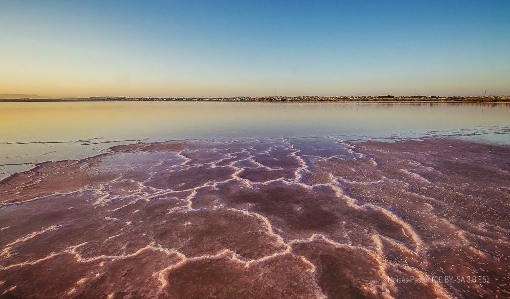 Torrevieja and its pink lake: natural park and salt industry